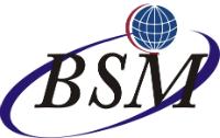 BSM Consultoria